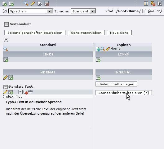 Typo3-Webseite-uebersetzen